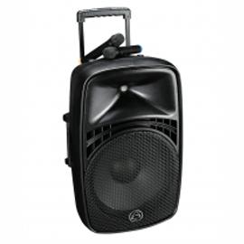 Portable self powered speaker